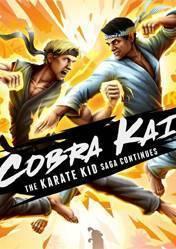 Buy Cheap Cobra Kai The Karate Kid Saga Continues PC CD Key