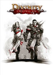 Buy Cheap Divinity: Original Sin PC CD Key