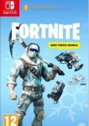 Buy Cheap Fortnite Deep Freeze Bundle NINTENDO SWITCH CD Key