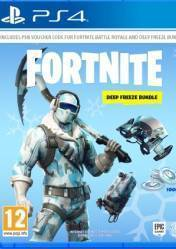Buy Fortnite Deep Freeze Bundle PS4 CD Key