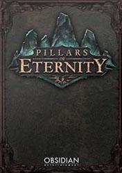 Buy Cheap Pillars of Eternity PC CD Key