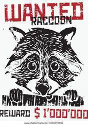 Buy Cheap Wanted Raccoon PC CD Key